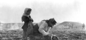 LIST OTWARTY W SPRAWIE POMNIKA ŻOŁNIERZY TURECKICH W KRAKOWIE